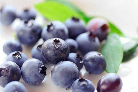 Close-up photography of the blueberry 版權商用圖片
