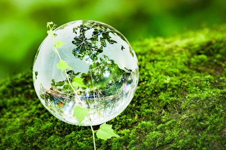 コケやツタ、ガラスの地球儀 写真素材