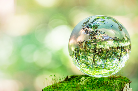 MOSS and glass globes Stockfoto