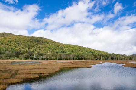 National parks of Japan Ozegahara autumn landscape