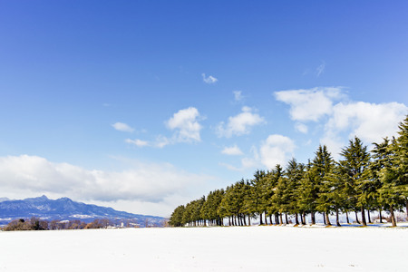 Under the blue sky snow