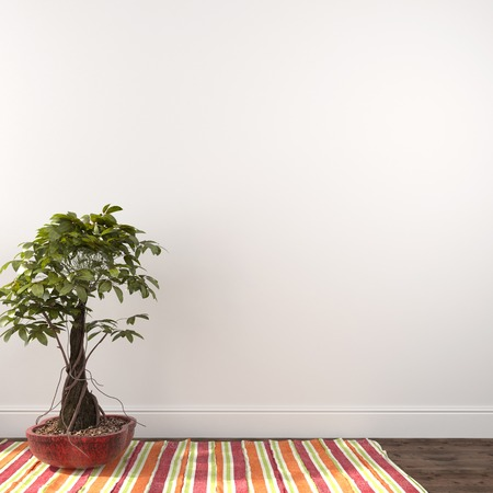 indoor plants: Plant in red pot against white wall