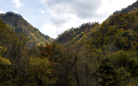 Autumn in the Qinling Mountains Archivio Fotografico