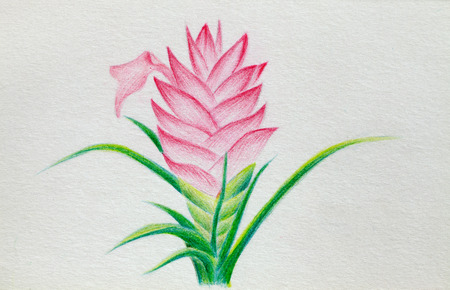 lead: color lead creation flower