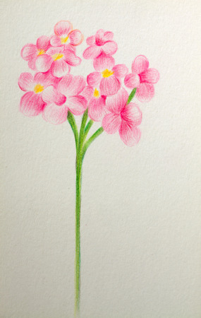 Hand painting flower on wall