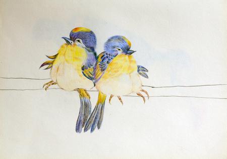 손으로 그려진 새들