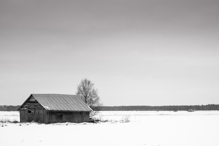 warmer: February is a cold month up in the Northern Finland. Even the barn houses seem to look for a warmer place to be.