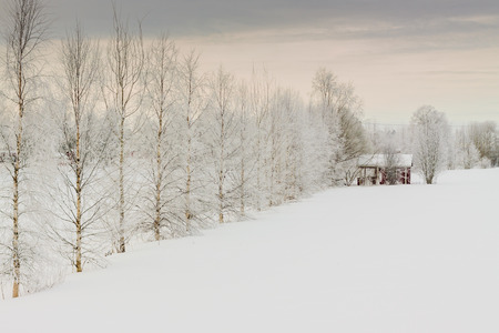 finland sauna: A lonely sauna building in a freezing day by the river in the rural Finland.