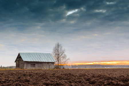 quite: The barn house stands tall against the dramatic sky of the spring sunset. There are quite a lot of this kind of places in the Northern Finland.