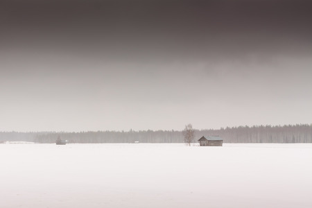 covered fields: The snow fell on the barns and covered the fields in February in the rural Finland.