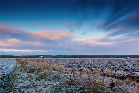 covered fields: The fields are covered in frost in the rural Finland. Still waiting for the snow in December.