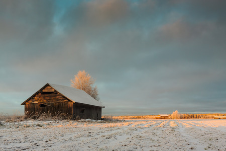 barns winter: The sun shines just a little bit of light on the barns and the fields in the middle of the winter in the rural Finland.