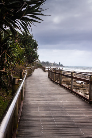pandanus tree: The boardwalk connects the beaches in Caloundra, the beautiful beach town in Queensland, Australia.
