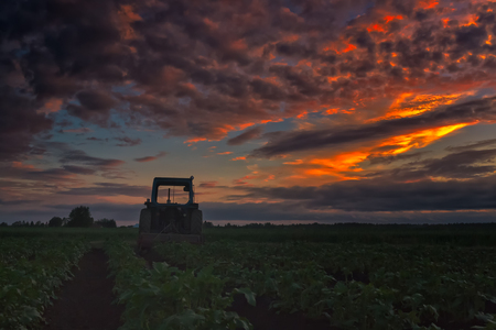 dramatically: The farmer has left his tractor to wait for another day in the potato fields. The summer sun sets dramatically behind the old farming tool at the Northern Finland.