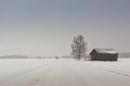 covered fields: A small road leads through the fields and by the barns in the Northern Finland. The snow has covered both the road and the fields.