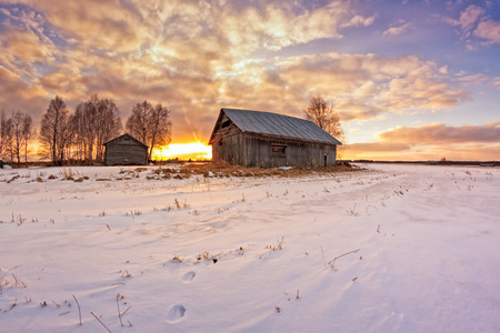 A rabbit has run on the snow to the old barn houses in the rural Finland. The spring sun sets dramatically behind the buildings. Stock Photo