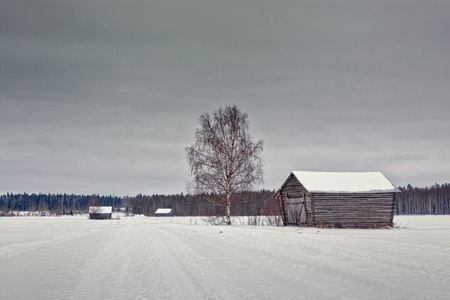 A snow covered road leads through the fields to the forest in the rural Finland. A couple of barn houses have been built along the road over the years.
