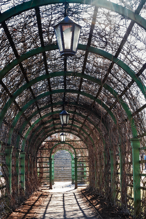 This old pergola leads to the steps at the Kadriorg park in Tallinn, the capital of Estonia. The park is famous for its straight lines designed by Peter the Great himself.