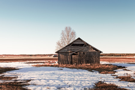 An old barn house stands on the springtime fields at the Northern Finland. The sun is coloring everything amber.