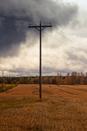 A telephone pole stands in the middle of the autumn fields at the rural Finland. The fields are ready for harvesting.