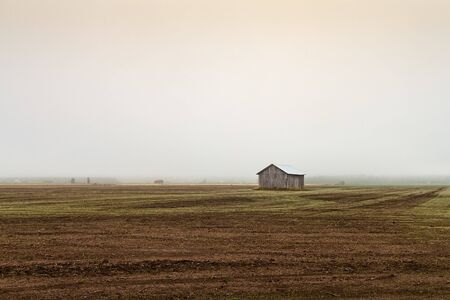 A lonely barn house stands on the early autumn fields of the rural Finland. The mist has covered the entire landscape.