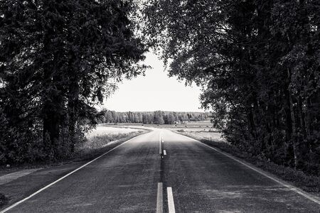 A lonely road leads winding to the horizon under the tree branches at the rural Finland. The road leads through an idyllic rural scene.