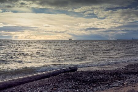 A lonely log lies on the beach at Pirita, Estonia. There is a garrison island in the distant horizon.