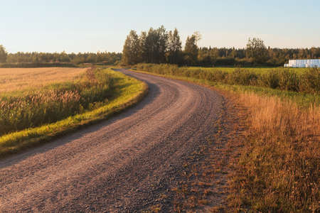 The autumn sun colors the landscape amber. The lonely gravel road leads winding through the fields at the rural Finland. Stock Photo