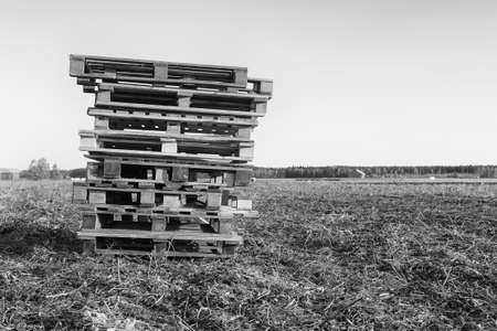 The farmer has left a pile of wooden pallets on the fields. They may be waiting for the potato crates. Stock Photo