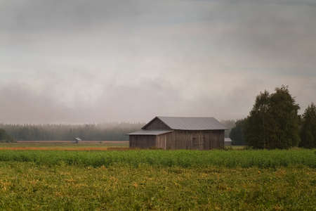 The autumn fog is rising from the fields at the rural Finland. When the autumn weather gets colder the fog rises from the warm ground.
