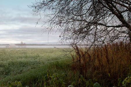 The mist covers the fields and the old barn houses on the autumn morning. The nature is slowly preparing for the winter.