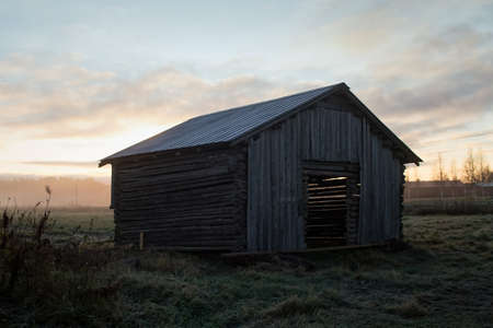The sunlight shines through the walls of an old barn house. The autumn morning is very misty and there is frost on the ground.