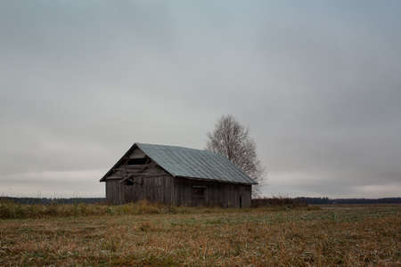 The cold autumn morning has covered the fields with frost. An old abandoned barn house stands alone on the fields.