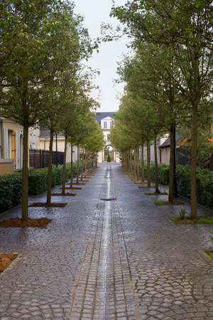 The alley in soaking wet on a rainy day in Serris, France. The trees form a beautiful alley to an archway.