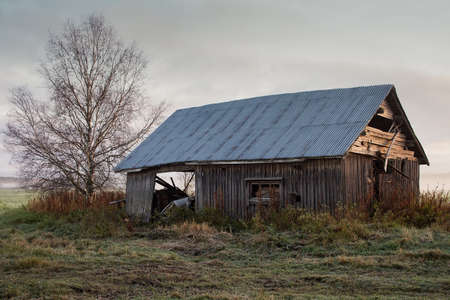 An old barn house on the misty fields of the rural Finland. The autumn morning mist is rising from the fields.