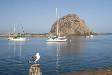 Morro Rock and yahts  Morro Bay near San Luis Obispo, CA  USA