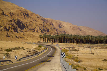 Road in the Jehuda Desert with palm Plantation Israel photo