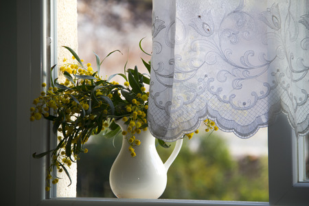 Open window with spring mimosa in ceramic jug photo