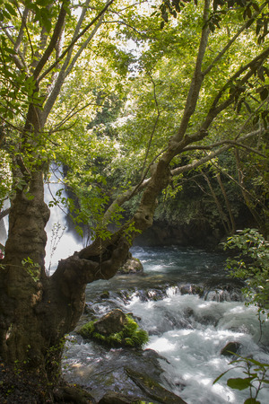 banias: River Hermon ,Banias Nature Reserve in northern Israel