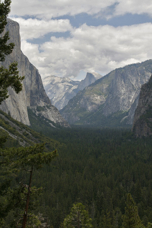 the sentinel: Yosemite Valley in the western Sierra Nevada mountains of California carved out by the Merced River.