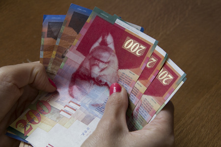 sheqel: Woman holding a bunch of Israeli New Sheqel banknotes in her hands.