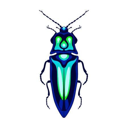 bluegreen: blue-green beetle