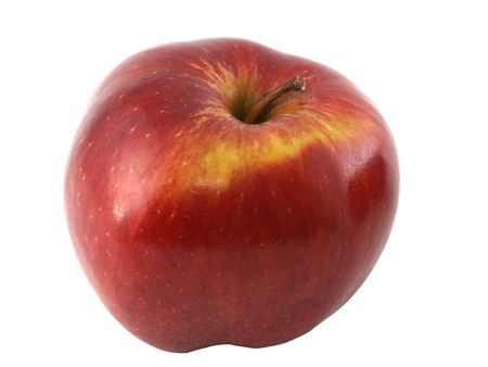 An apple variety called Red Cheaf isolated on white.  photo