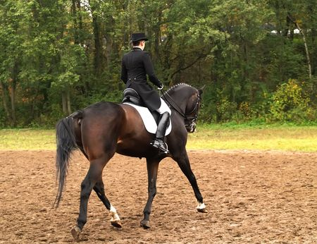 eventing: Girl on horse in a dressage competition.