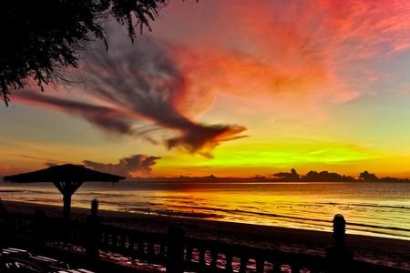 Sunrise bird Stock Photo - 8057022