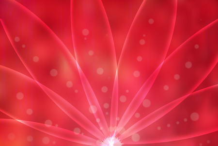 photographic effects: Abstract light background, red flower