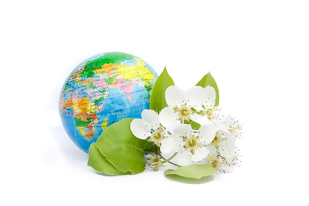 Spring blooming earth on white background photo