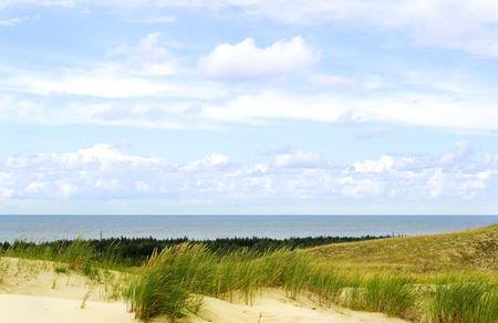 next horizon: View of Dead Dunes, Curonian Spit and Curonian Lagoon, Nagliai, Nida, Klaipeda, Lithuania. Baltic Dunes.Unesco heritage.