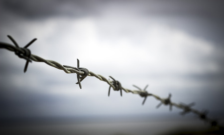 Silhouette of barbed wire on dark sky
