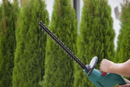 Jardinier avec un outils de jardinage professionnel au travail. plantation de verdure.